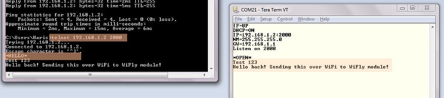 Telnet Test